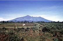 Gunung Slamet ( Banyumas) foto from Google